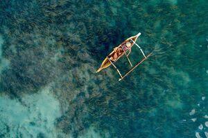 عکس/ ماهیگیری میان جلبکهای دریایی