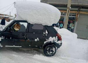 عکس/ ارتفاع برف در سقز