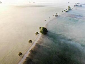 عکسهای برتر محیط زیست در سال ۲۰۲۰