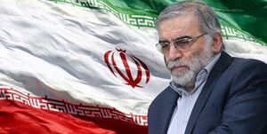 دفاع تمام قد کارشناس ترک از ایران +فیلم
