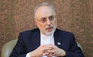 صالحی: خون شهید فخریزاده موجب تقویت ایران اسلامی خواهد شد