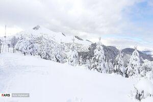 عکس/ برف پاییزی در روستاهای کوهستانی تالش