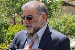 پیشنهاد نامگذاری خیابانی در تهران به نام شهید فخریزاده
