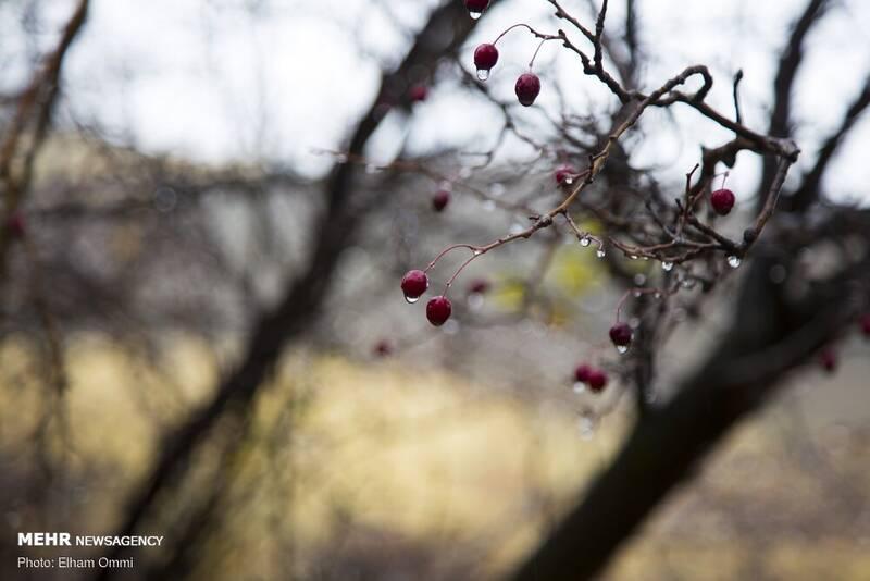 طبیعت پاییزی روستاهای اطراف سنندج