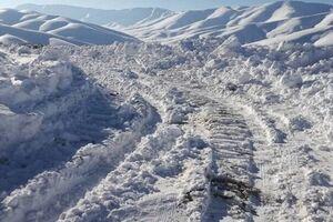 زشت و زیبای برف در بستان آباد/ از ارتفاع یک متری برف تا شکستن درختان +عکس