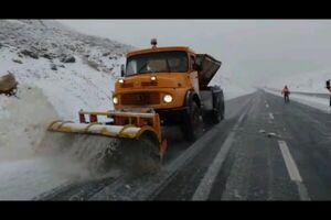 بارش برف در محور چالوس +فیلم