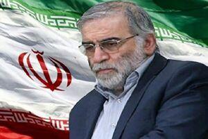 امارات ترور دانشمند هسته ای ایران را محکوم کرد