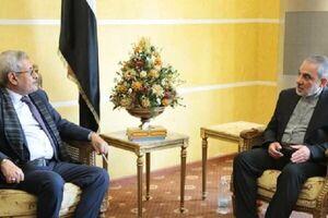 رایزنی سفیر ایران و وزیر یمنی درباره تقویت همکاری های علمی