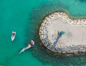 تصویر هوایی دومین نهنگ به گل نشسته در کیش