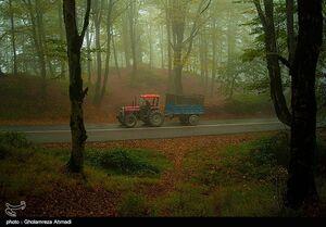عکس/ طبیعت پاییزی بهشهر مازندران