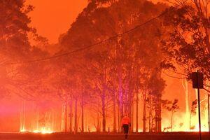عکس/ آتش سوزی گسترده در استرالیا