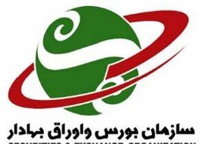 نائب رئیس مجلس: سازمان بورس مانع پیگیری تخلفات بورس است