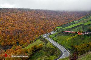 عکس/ پاییز رنگارنگ ایران
