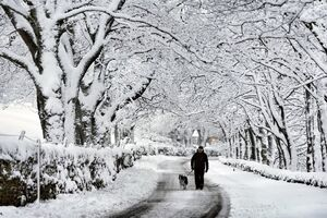 عکس/ برف پاییزی کرج