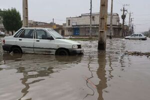 فیلم/ وقوع سیلاب در بوشهر