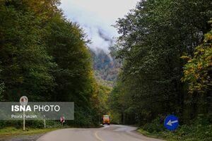 عکس/ پاییز دیدنی در جنگلهای «هیرکانی»