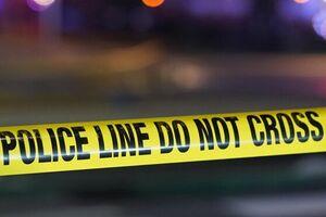 ۲ مجروح در حادثه تیراندازی در دیترویت - کراپشده