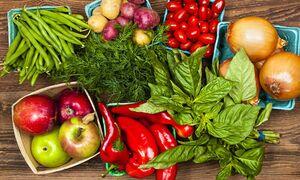 ارتباط میان رژیم غذایی گیاهی و تقویت متابولیسم