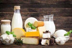 ۲۲ خاصیت خاص «شیر»