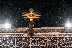 عکس/ حرم امام علی(ع) در یک شب بارانی