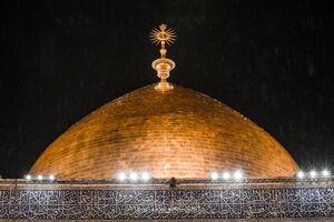 تدابیر کرونایی متولیان حرم امام علی(ع) +عکس و فیلم