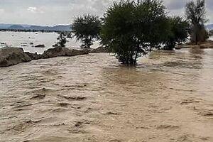 عکس/وقتی سیلاب به قبرستان هم رحم نمیکند!