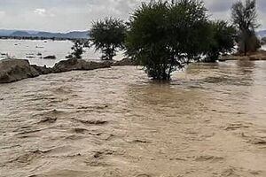 450 شهر و 8600 روستای کشور در معرض سیلاب - کراپشده