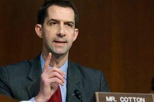 سناتور جمهوریخواه: باید کمیتهای برای تحقیق از پسر بایدن تشکیل شود - کراپشده