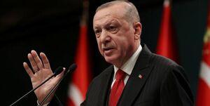 واکنش تعجب برانگیز اردوغان به تحریمهای ناتو
