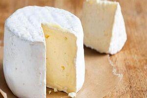 عکس/ سالمترین پنیرهای جهان