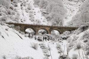 عکس/ بارش برف پاییزی در«ورسک»