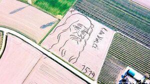عکس/ هنرمندی که نقاشی را شخم میزند