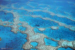 آلودگی اقیانوس ها تهدیدی برای سلامت انسان ها است