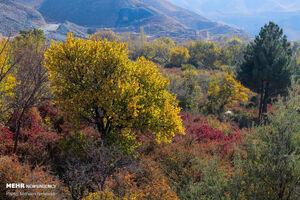 عکس/ پاییز در روستای گردشگری «دزگ»