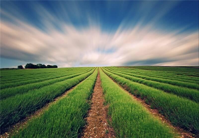 اعلام توصیههای هواشناسی برای کشاورزان