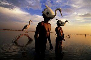 عکس/ ماهیگیران هند