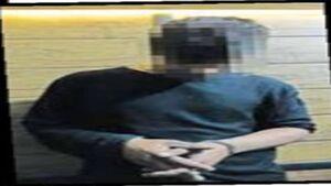 آزارگر ۲۰ زن و کودک اعدام شد