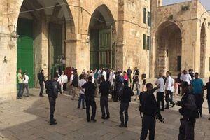 فیلم/ هتک حرمت مسجد الاقصی توسط کفتارها