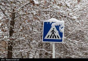 در کدام مناطق باران و برف میبارد؟