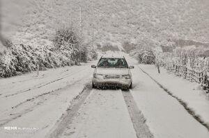 عکس/ بارش برف در سوادکوه