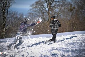 عکس/ برف بازی در مازندران سپید پوش