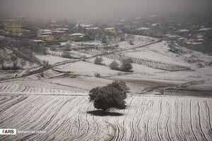 سرمای هوا و یخبندان در ۲۲ استان