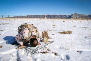عکس/ اقامه نماز یک مرزبان روی برف