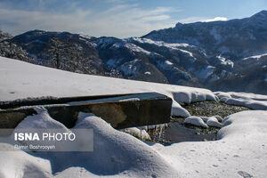 زمستان در شمالیترین «موزه طبیعی» ایران