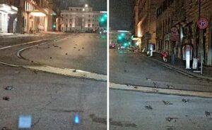 مرگ صدها پرنده در پایتخت ایتالیا