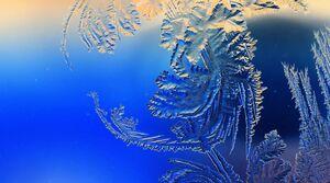 تصوير ميكروسكوپی از برف