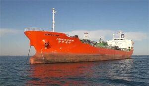 کشتی کرهای باید خسارت وارده به محیطزیست را بپردازد
