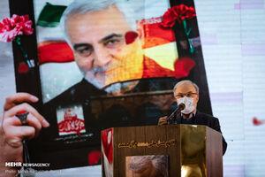 عکس/ یادواره شهدای مدافع سلامت در کرمان