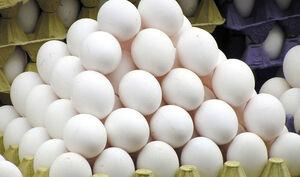 تخممرغ های دولت گران فروخته میشود!