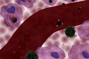 بهبود شیمی درمانی با نانوذرات مغناطیسی داغ